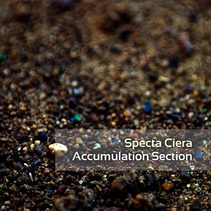Image for 'Accumulation Section'