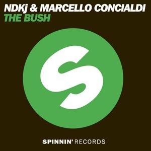 Image for 'NDKj & Marcello Concialdi'