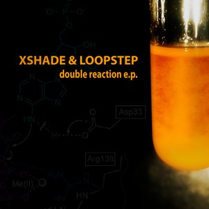 Image for 'Double Reaction'