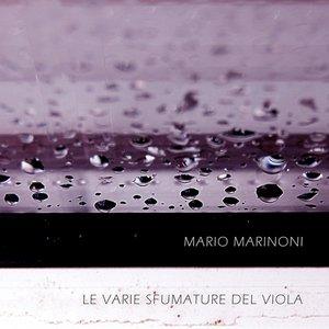 Imagem de 'Le Varie Sfumature del Viola'