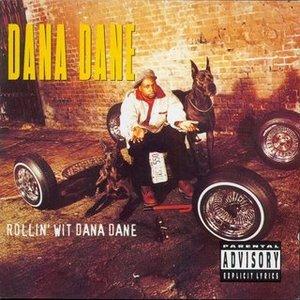 Immagine per 'Rollin' Wit Dana Dane'