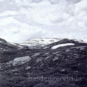Image for 'Hardangervidda'