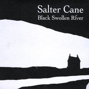 Bild für 'Black Swollen River'