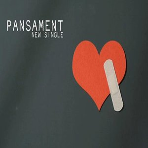 Image for 'Pansament'