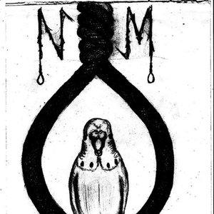 Image for 'Neka Morgondagen'