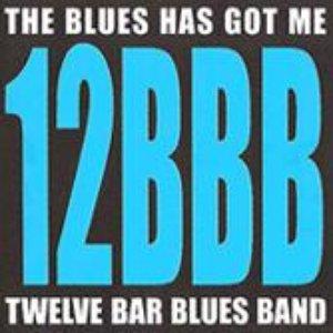 Image for 'Twelve Bar Blues Band'