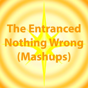 Image for 'Nothing Wrong (Mashups)'
