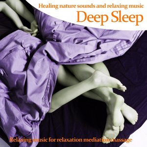 Image for 'Deep Sleep : Healing Nature Sounds and Relaxing Music (Music for Meditation Massage Relaxation and Deep Sleep)'