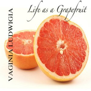 Image for 'Life as a Grapefruit'