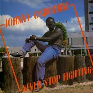 Immagine per 'Never Stop Fighting'