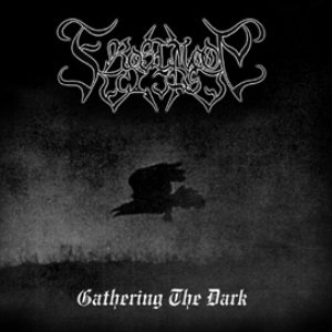 Image for 'Gathering the Dark'