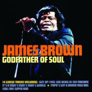 Image for 'Godfather Of Soul'