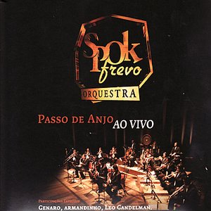 Image for 'Frevo Sanfonado'