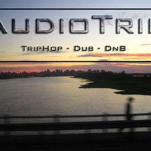Bild för 'Electronicdub'