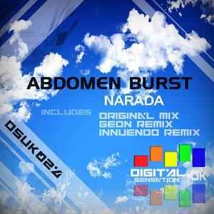 Imagem de 'Narada (Innuendo Remix)'