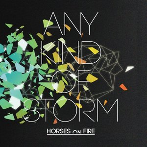 Image for 'Any Kind of Storm'