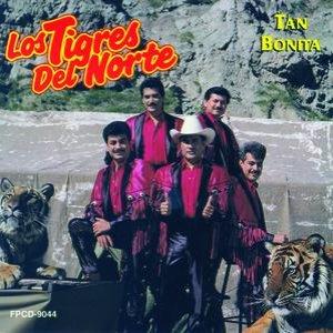 Image for 'El Sastre'