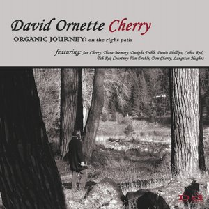 Image for 'Organic Journey: On The Right Path'