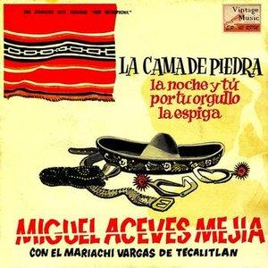 """Image for 'Vintage México Nº45 - EPs Collectors """"La Cama De Piedra""""'"""