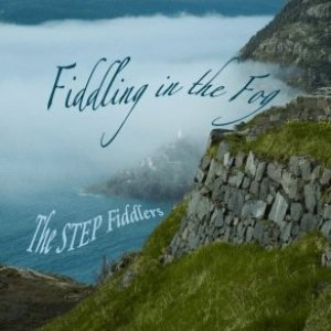 Image for 'Fiddling in the Fog'