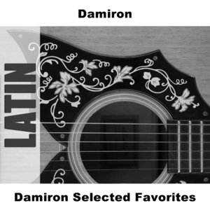Image for 'Damiron Selected Favorites'
