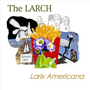 Image for 'Larix Americana'