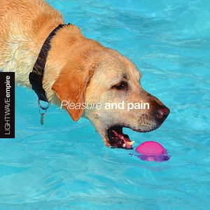 Image for 'Pleasure And Pain'
