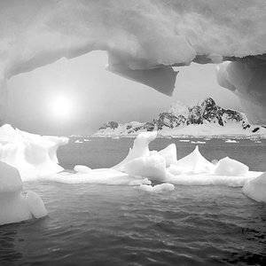 Image for 'Polar Day'