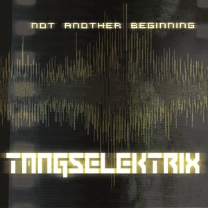 Image for 'Not Another Beginning'