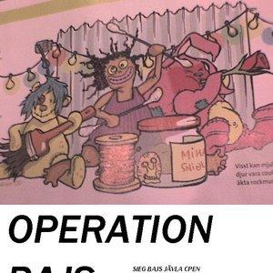 Bild för 'Operation Bajs'