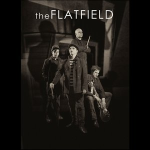 Image for 'The Flatfield'