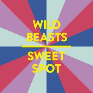 Immagine per 'Sweet Spot'