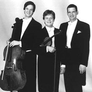 Image for 'Trio Fontenay'