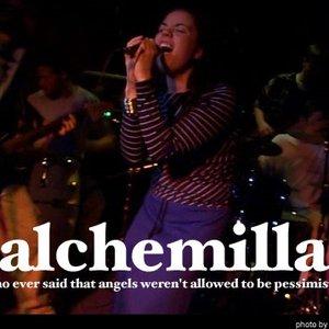 Image for 'Alchemilla'