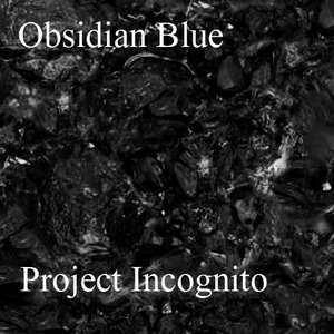Image for 'Project Incognito'