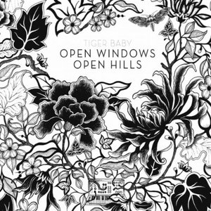 Image for 'Open Windows Open Hills'