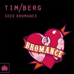 Image for 'Tim Berg - Bromance (Porter Robinson Remix)'