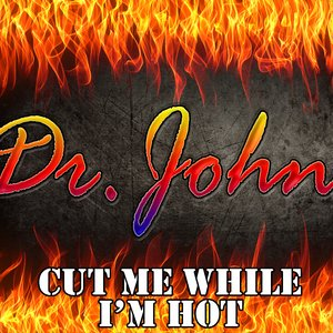 Image for 'Cut Me While I'm Hot'