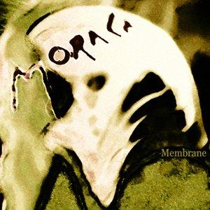 Image for 'Membrane'