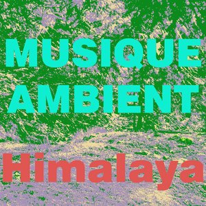 Image for 'Musique Ambient'