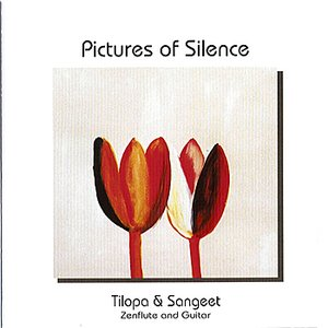 Image for 'Pictures of Silence'