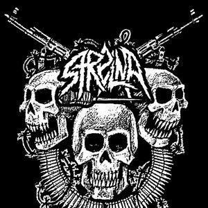 Image for 'Strelna'