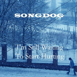 Image pour 'I'm Still Waiting to Start Hurting'
