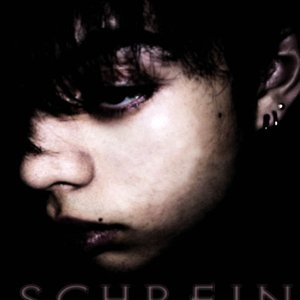 Image for 'Schrein'