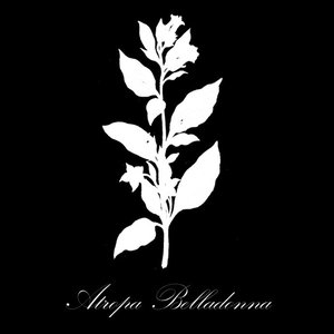 Image for 'Atropa Belladonna'