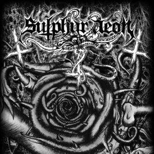 Image for 'Sulphur Psalms'