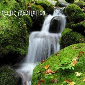 Image for 'Celtic Meditation Music Specialists'