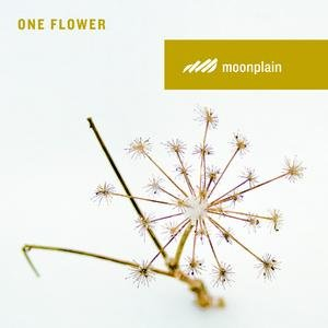 Image for 'One Flower'