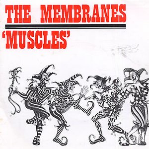 Image for 'Muscles'