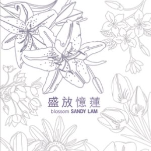 Image for 'Ultimate Colletion - Sandy Lam'